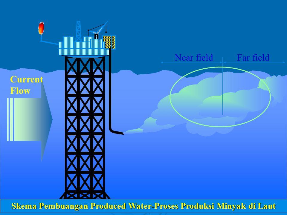 Ilustrasi Injeksi atau Re-injeksi Air ke dalam Reservoir Pada beberapa kasus, injeksi air laut dilakukan untuk pemeliharaan tekanan hidrolik dalam menjaga kestabilan reservoir.