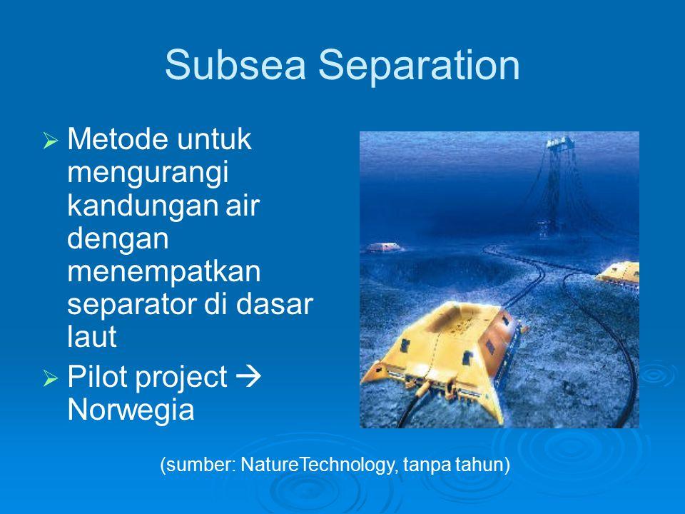 Sidetracking Metode untuk memerangkap produced water sebelum mencapai permukaan dengan membuat sumur- sumur lain di sekitar sumur utama (sumber: NatureTechnology, tanpa tahun)