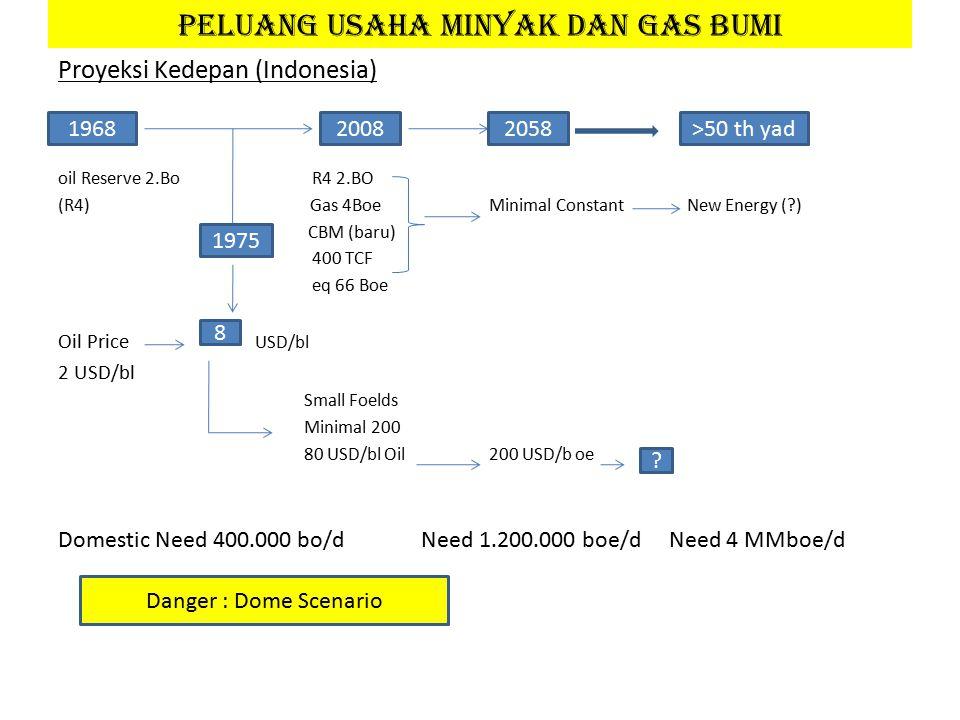 Proyeksi Kedepan (Indonesia) oil Reserve 2.Bo R4 2.BO (R4) Gas 4Boe Minimal Constant New Energy (?) CBM (baru) 400 TCF eq 66 Boe Oil Price USD/bl 2 USD/bl Small Foelds Minimal 200 80 USD/bl Oil 200 USD/b oe Domestic Need 400.000 bo/d Need 1.200.000 boe/d Need 4 MMboe/d 9.