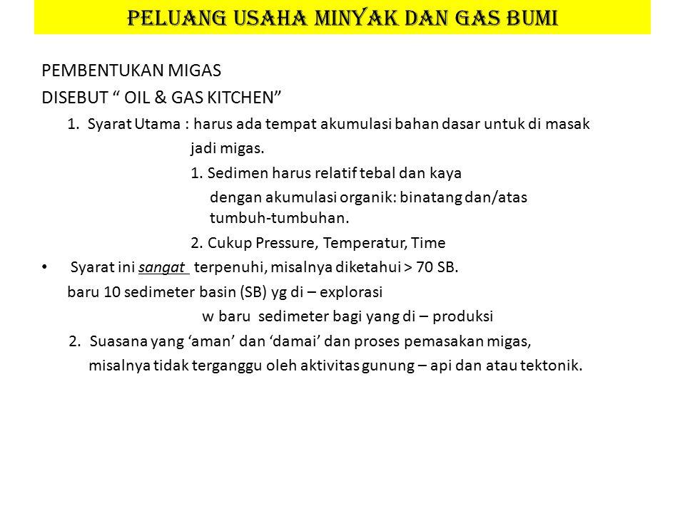 PEMBENTUKAN MIGAS DISEBUT OIL & GAS KITCHEN 1.