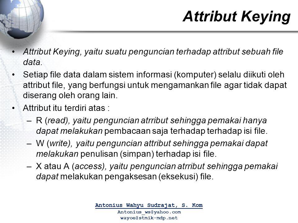 Attribut Keying Attribut Keying, yaitu suatu penguncian terhadap attribut sebuah file data. Setiap file data dalam sistem informasi (komputer) selalu