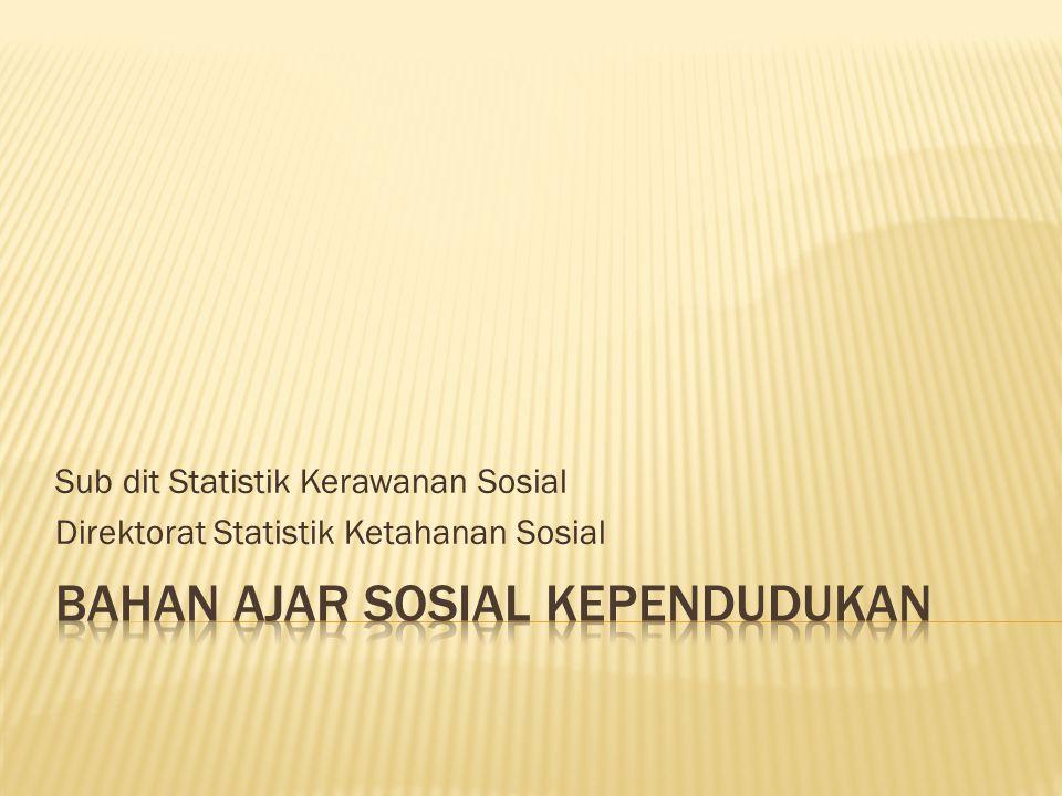 Sub dit Statistik Kerawanan Sosial Direktorat Statistik Ketahanan Sosial