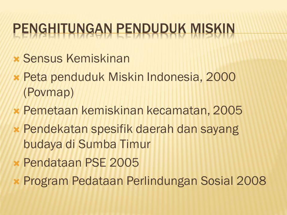  Sensus Kemiskinan  Peta penduduk Miskin Indonesia, 2000 (Povmap)  Pemetaan kemiskinan kecamatan, 2005  Pendekatan spesifik daerah dan sayang budaya di Sumba Timur  Pendataan PSE 2005  Program Pedataan Perlindungan Sosial 2008