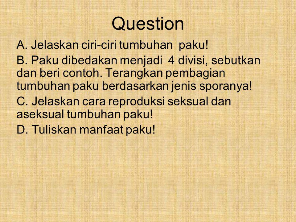 Question A. Jelaskan ciri-ciri tumbuhan paku! B. Paku dibedakan menjadi 4 divisi, sebutkan dan beri contoh. Terangkan pembagian tumbuhan paku berdasar