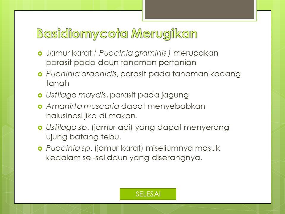  Jamur karat ( Puccinia graminis ) merupakan parasit pada daun tanaman pertanian  Puchinia arachidis, parasit pada tanaman kacang tanah  Ustilago m