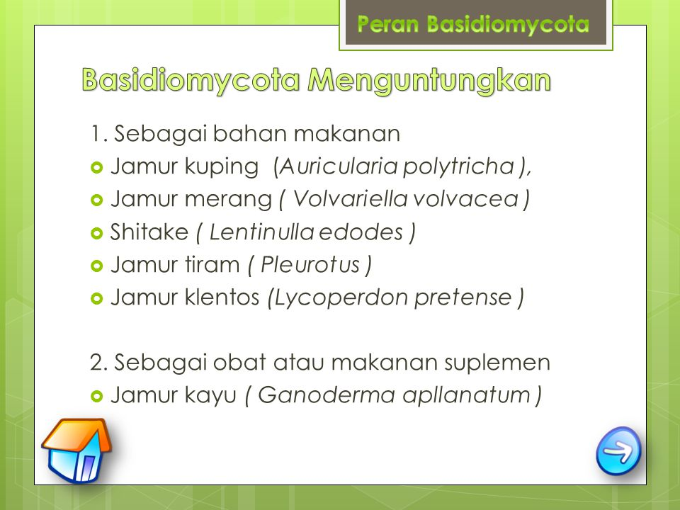 1. Sebagai bahan makanan  Jamur kuping (Auricularia polytricha ),  Jamur merang ( Volvariella volvacea )  Shitake ( Lentinulla edodes )  Jamur tir