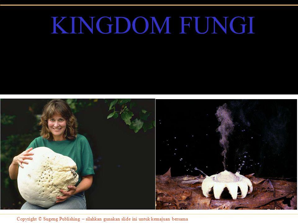 Copyright © Sugeng Publishing – silahkan gunakan slide ini untuk kemajuan bersama KINGDOM FUNGI