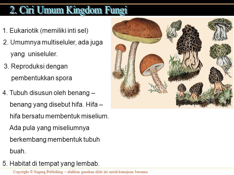 Copyright © Sugeng Publishing – silahkan gunakan slide ini untuk kemajuan bersama Hifa Miselium Badan Buah Sel Penghasil Spora