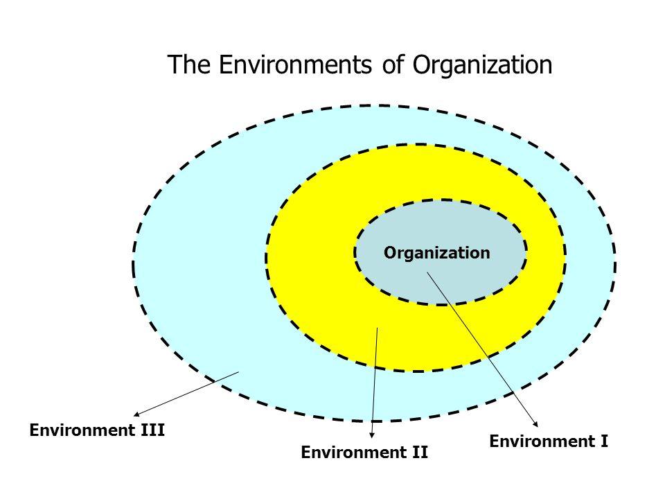 Organization Environment I Environment II Environment III The Environments of Organization