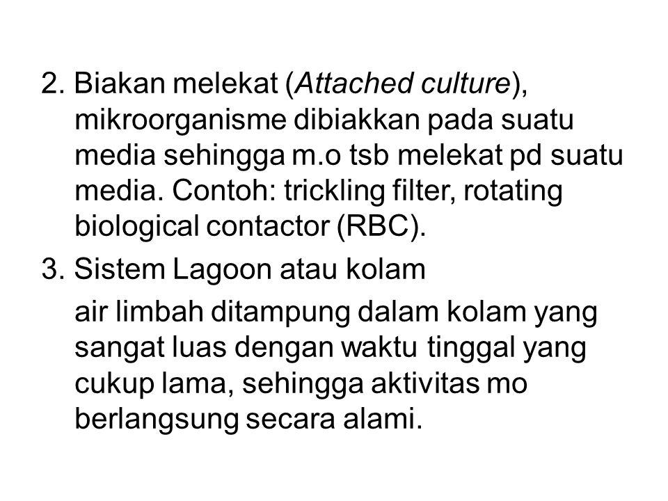 2. Biakan melekat (Attached culture), mikroorganisme dibiakkan pada suatu media sehingga m.o tsb melekat pd suatu media. Contoh: trickling filter, rot