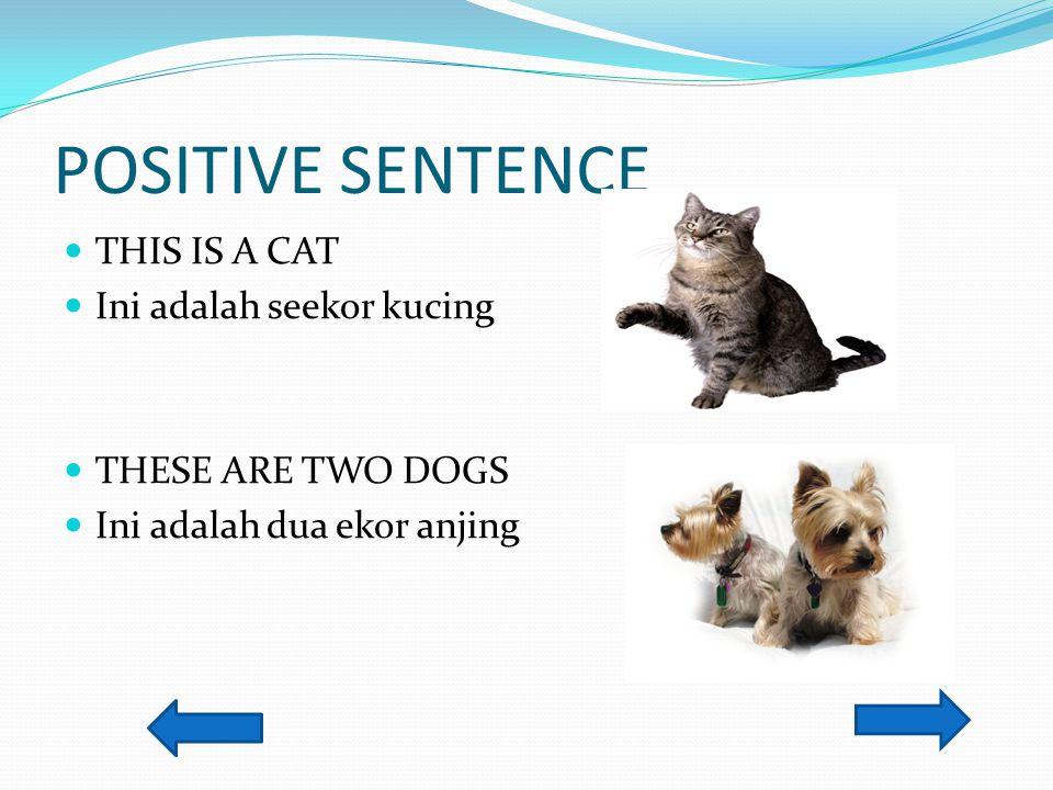 POSITIVE SENTENCE THIS IS A CAT Ini adalah seekor kucing THESE ARE TWO DOGS Ini adalah dua ekor anjing