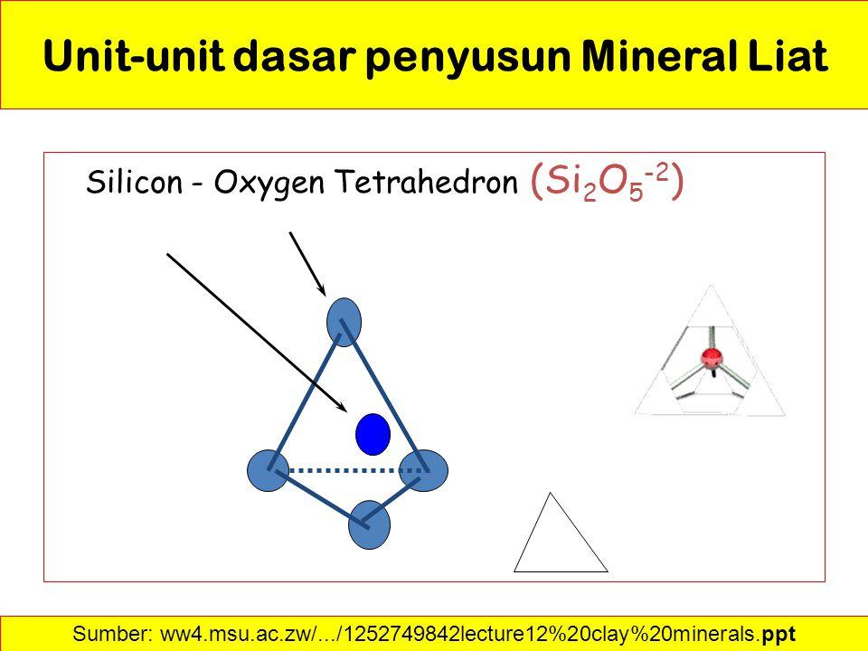 Unit-unit dasar penyusun Mineral Liat Silicon - Oxygen Tetrahedron (Si 2 O 5 -2 ) Sumber: ww4.msu.ac.zw/.../1252749842lecture12%20clay%20minerals.ppt
