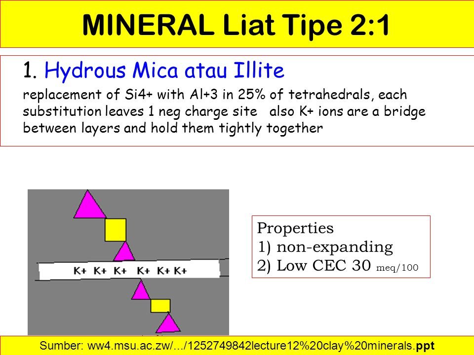 MINERAL Liat Tipe 2:1 1. Hydrous Mica atau Illite replacement of Si4+ with Al+3 in 25% of tetrahedrals, each substitution leaves 1 neg charge site als