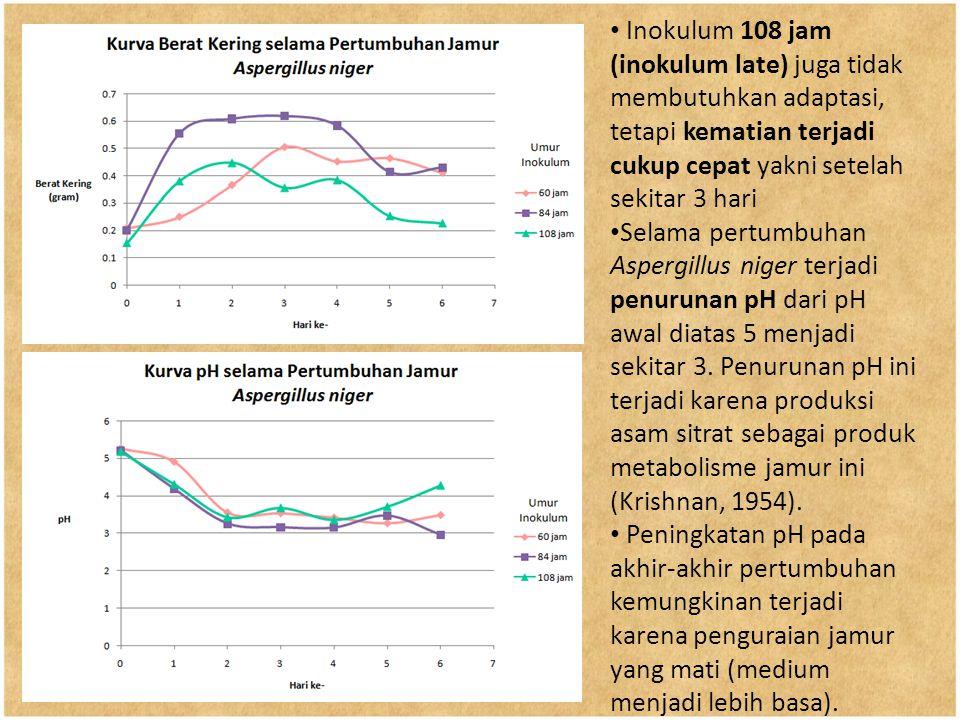 Inokulum 108 jam (inokulum late) juga tidak membutuhkan adaptasi, tetapi kematian terjadi cukup cepat yakni setelah sekitar 3 hari Selama pertumbuhan