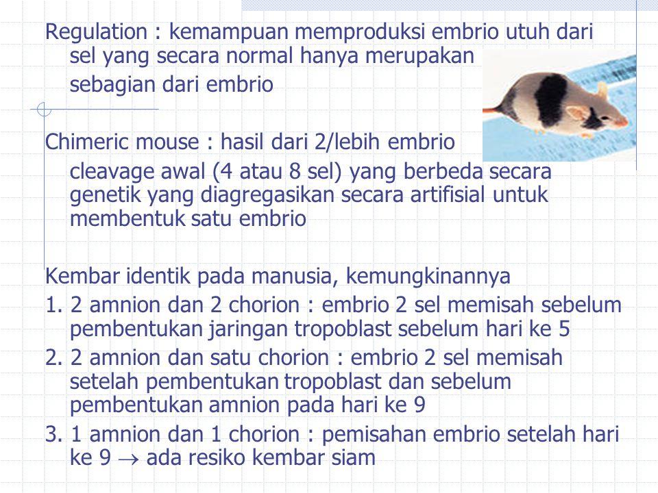 Regulation : kemampuan memproduksi embrio utuh dari sel yang secara normal hanya merupakan sebagian dari embrio Chimeric mouse : hasil dari 2/lebih embrio cleavage awal (4 atau 8 sel) yang berbeda secara genetik yang diagregasikan secara artifisial untuk membentuk satu embrio Kembar identik pada manusia, kemungkinannya 1.