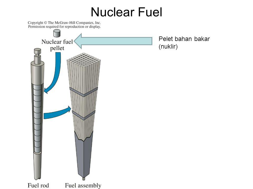 Nuclear Fuel Pelet bahan bakar (nuklir)