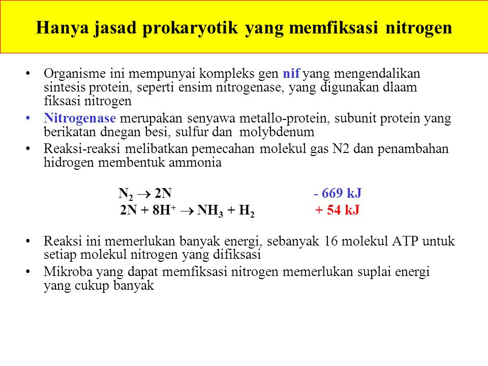 University of Sydney Alafalfa (Medicago sativa) USDA - ARS Bintil Akar