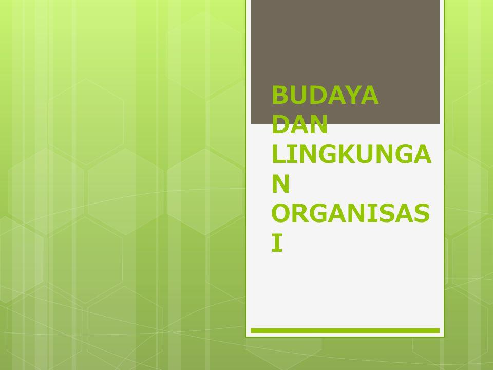 BUDAYA DAN LINGKUNGA N ORGANISAS I