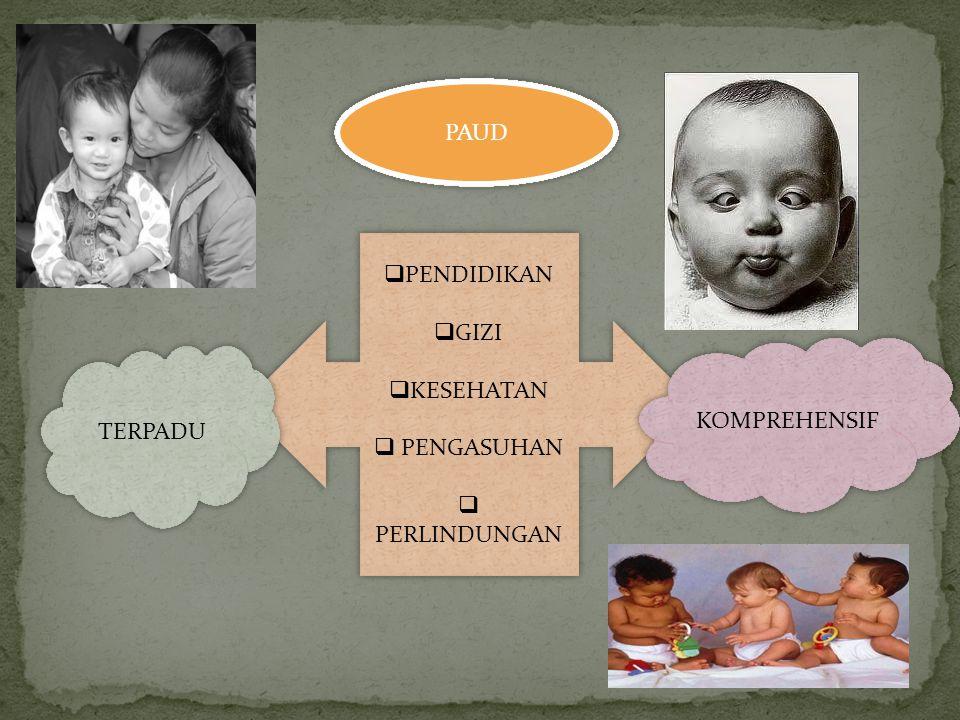 PAUD  Pertumbuhan dan Perkembangan Fisik (motorik kasar dan halus)  Kecerdasan (kognisi, kreativitas, emosi, dan spiritual)  Sosial  Emosional  B