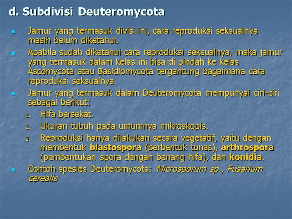 d. Subdivisi Deuteromycota Jamur yang termasuk divisi ini, cara reproduksi seksualnya masih belum diketahui. Jamur yang termasuk divisi ini, cara repr
