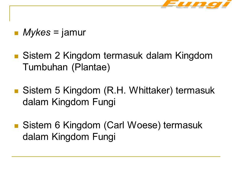 Mykes = jamur Sistem 2 Kingdom termasuk dalam Kingdom Tumbuhan (Plantae) Sistem 5 Kingdom (R.H. Whittaker) termasuk dalam Kingdom Fungi Sistem 6 Kingd