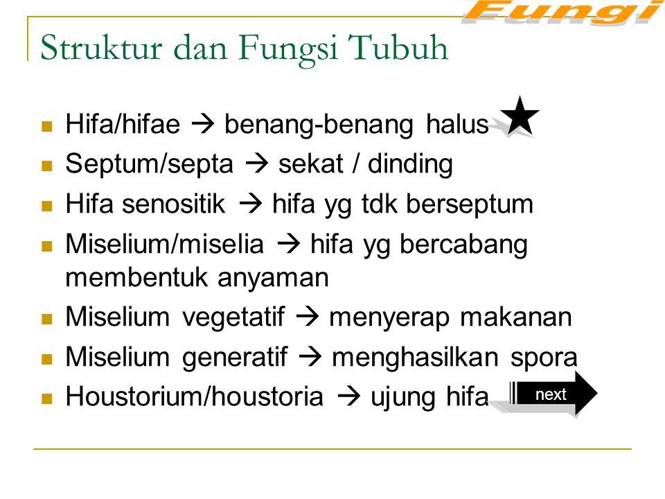 Struktur dan Fungsi Tubuh Hifa/hifae  benang-benang halus Septum/septa  sekat / dinding Hifa senositik  hifa yg tdk berseptum Miselium/miselia  hi