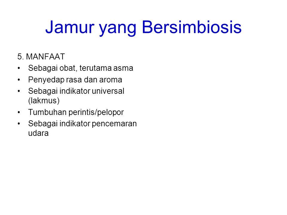 Jamur yang Bersimbiosis 5. MANFAAT Sebagai obat, terutama asma Penyedap rasa dan aroma Sebagai indikator universal (lakmus) Tumbuhan perintis/pelopor