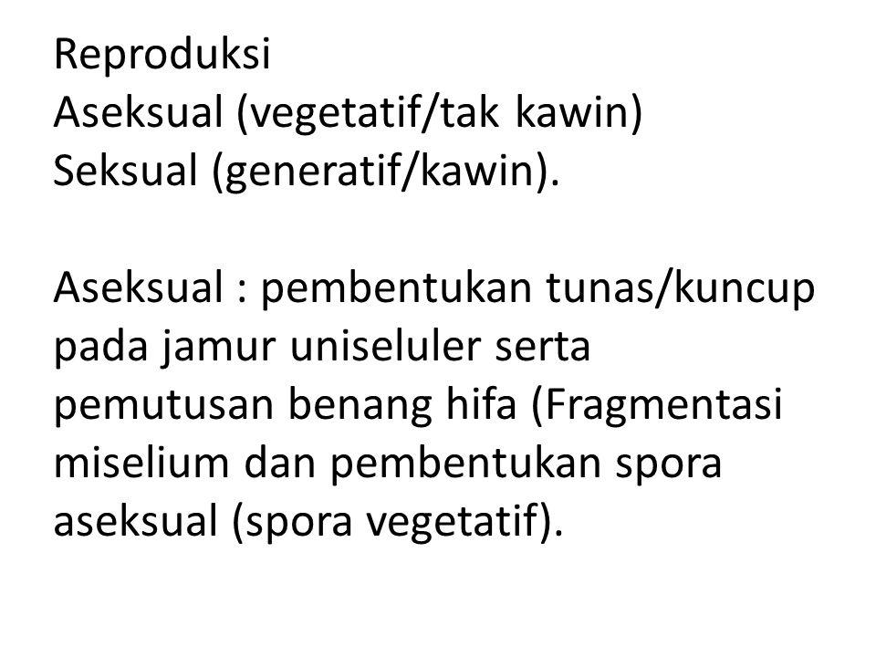 Reproduksi Aseksual (vegetatif/tak kawin) Seksual (generatif/kawin). Aseksual : pembentukan tunas/kuncup pada jamur uniseluler serta pemutusan benang