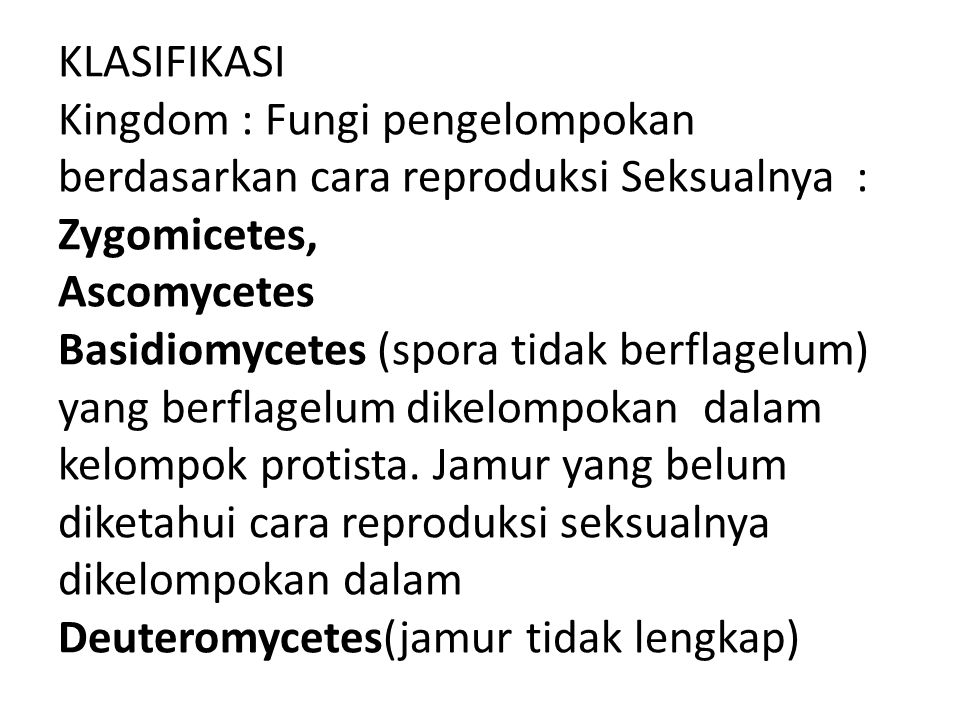 KLASIFIKASI Kingdom : Fungi pengelompokan berdasarkan cara reproduksi Seksualnya : Zygomicetes, Ascomycetes Basidiomycetes (spora tidak berflagelum) y