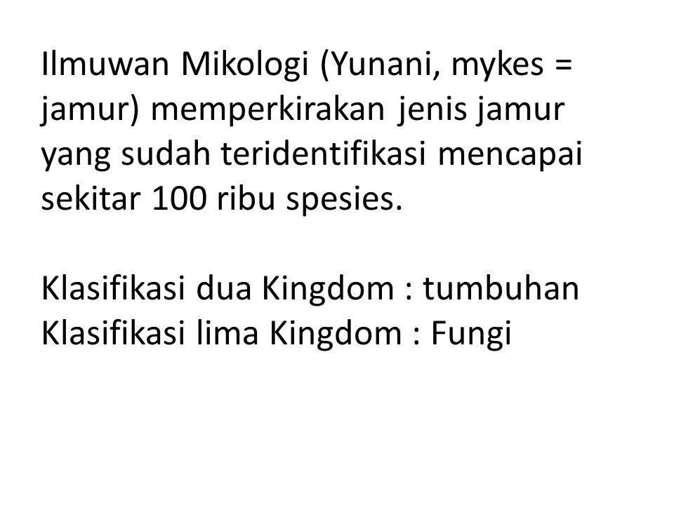 Ciri jamur : Anggota Kingdom Fungi mempunyai ciri khusus, yaitu organisme eukariot yang memiliki dinding sel, namun tidak memiliki klorofil.