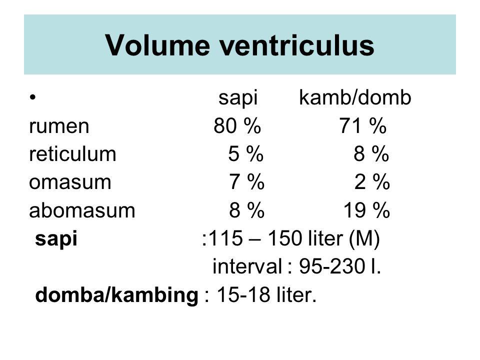 Volume ventriculus sapi kamb/domb rumen 80 % 71 % reticulum 5 % 8 % omasum 7 % 2 % abomasum 8 % 19 % sapi :115 – 150 liter (M) interval : 95-230 l. do