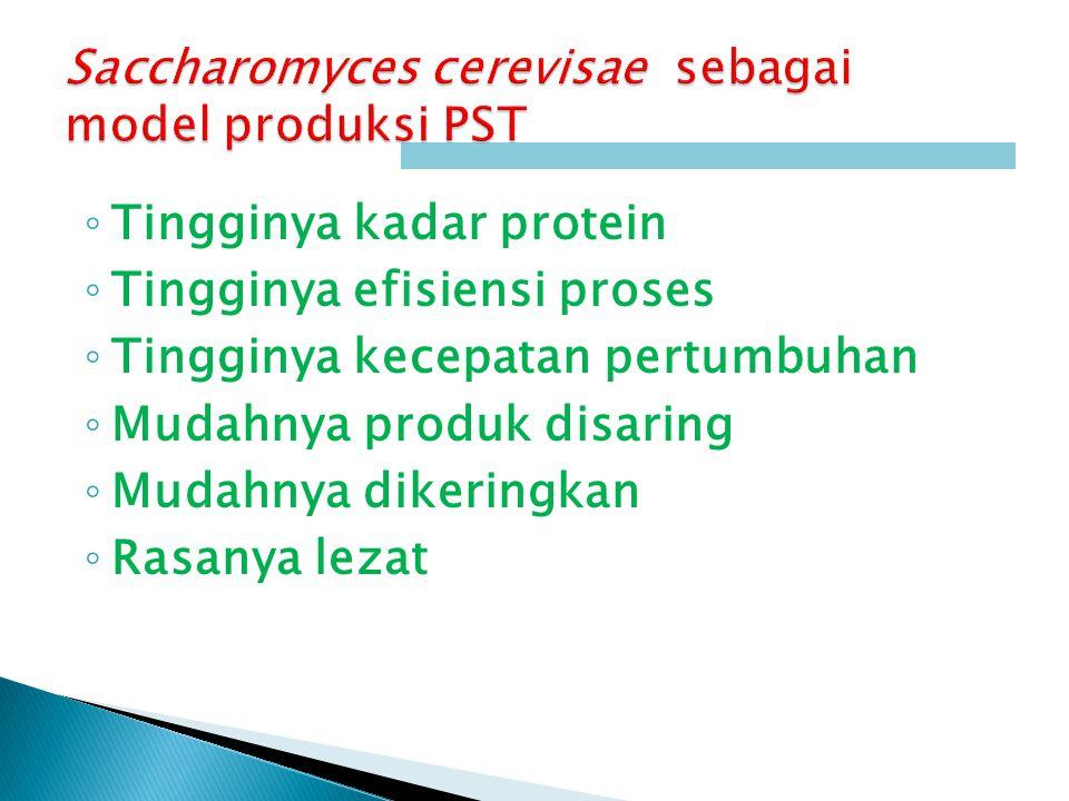◦ Tingginya kadar protein ◦ Tingginya efisiensi proses ◦ Tingginya kecepatan pertumbuhan ◦ Mudahnya produk disaring ◦ Mudahnya dikeringkan ◦ Rasanya lezat
