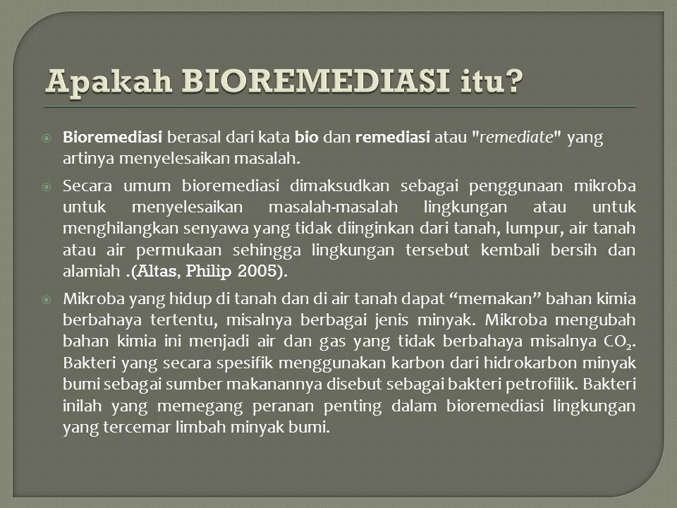 Bioremediasi berasal dari kata bio dan remediasi atau remediate yang artinya menyelesaikan masalah.