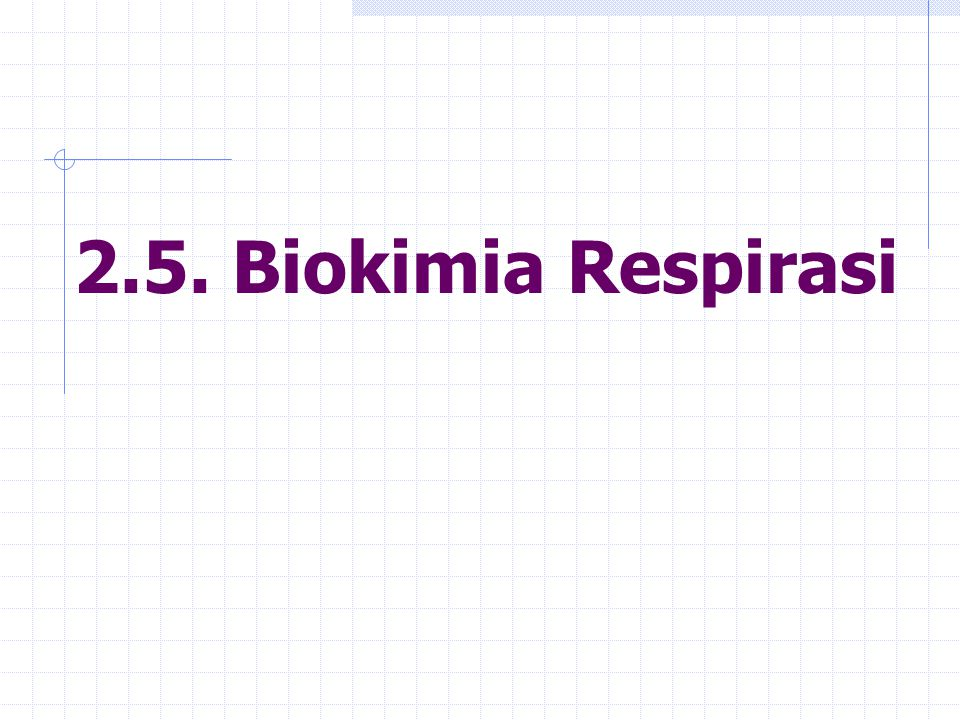 2.5. Biokimia Respirasi