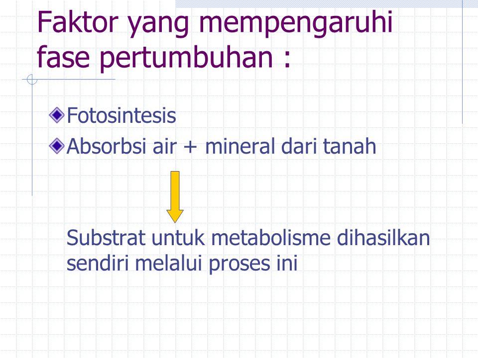 Faktor yang mempengaruhi fase pertumbuhan : Fotosintesis Absorbsi air + mineral dari tanah Substrat untuk metabolisme dihasilkan sendiri melalui proses ini