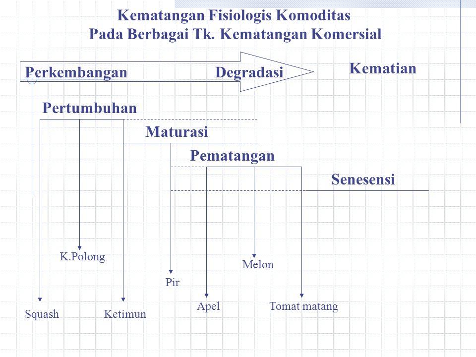 PerkembanganDegradasi Kematangan Fisiologis Komoditas Pada Berbagai Tk.