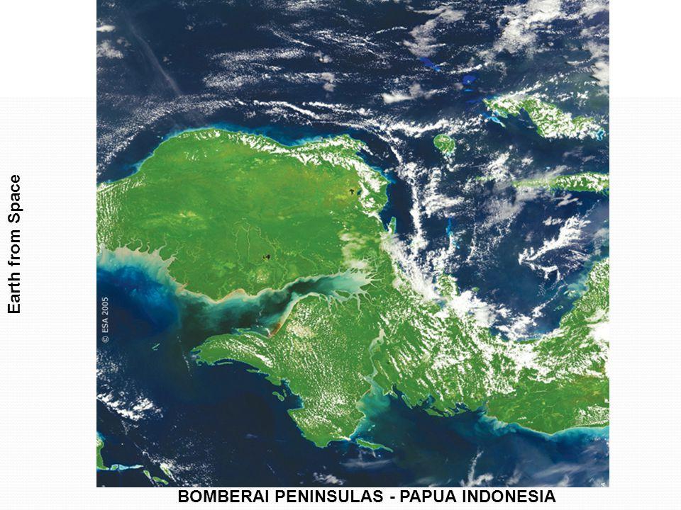 BOMBERAI PENINSULAS - PAPUA INDONESIA Earth from Space