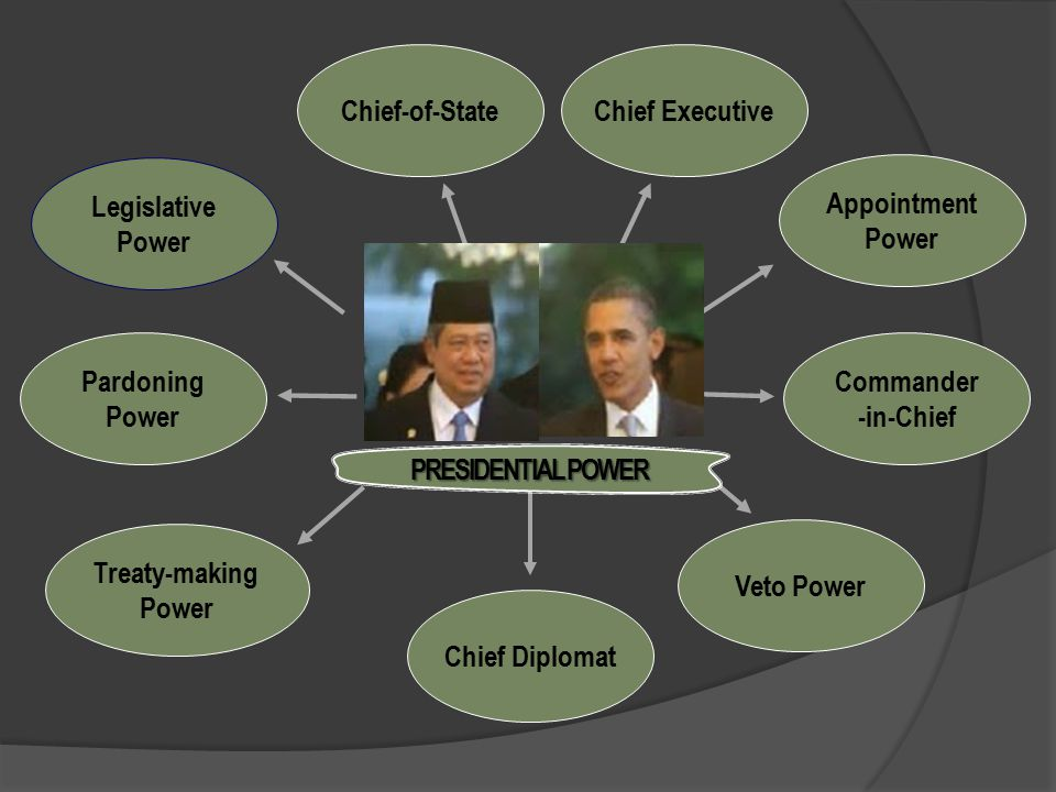 Commander -in-Chief Appointment Power Pardoning Power Legislative Power Treaty-making Power Veto Power Chief Executive Chief Diplomat Chief-of-State PRESIDENTIAL POWER