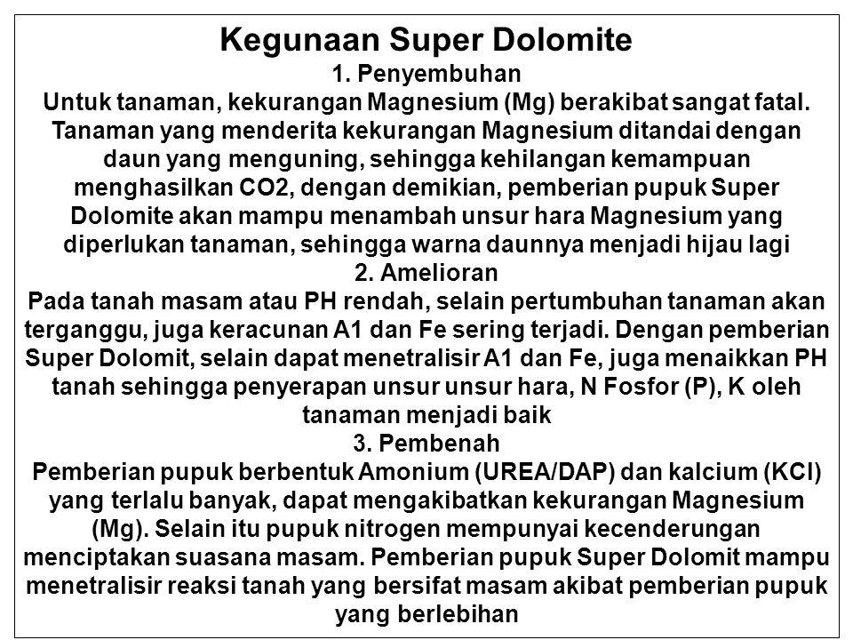 Kegunaan Super Dolomite 1. Penyembuhan Untuk tanaman, kekurangan Magnesium (Mg) berakibat sangat fatal. Tanaman yang menderita kekurangan Magnesium di