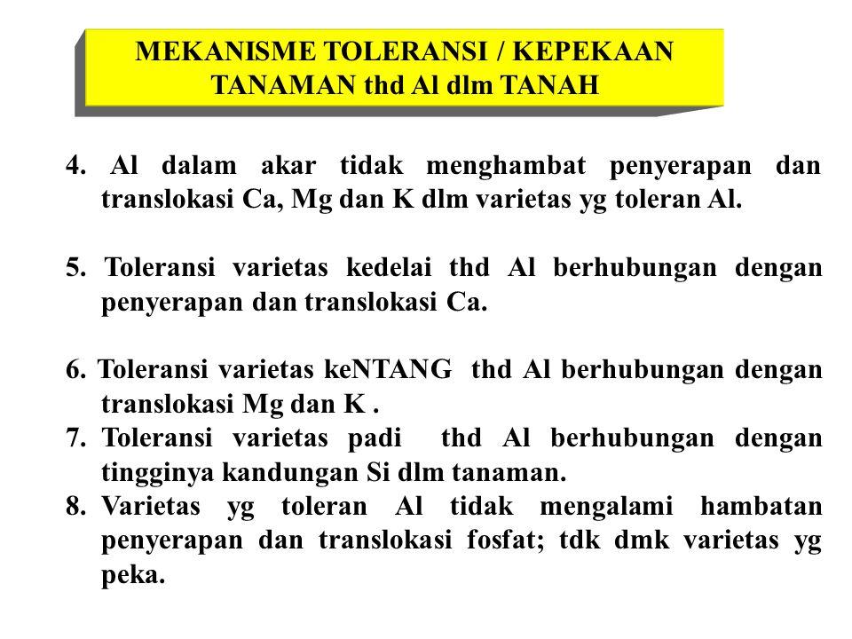 MEKANISME TOLERANSI / KEPEKAAN TANAMAN thd Al dlm TANAH 4. Al dalam akar tidak menghambat penyerapan dan translokasi Ca, Mg dan K dlm varietas yg tole