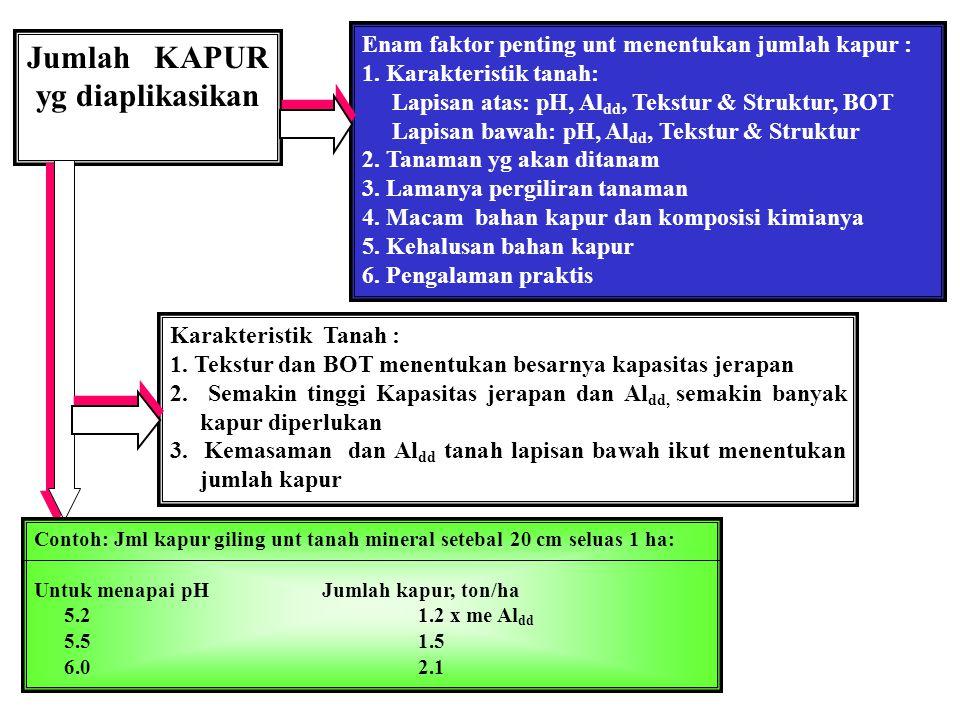 Jumlah KAPUR yg diaplikasikan Enam faktor penting unt menentukan jumlah kapur : 1. Karakteristik tanah: Lapisan atas: pH, Al dd, Tekstur & Struktur, B
