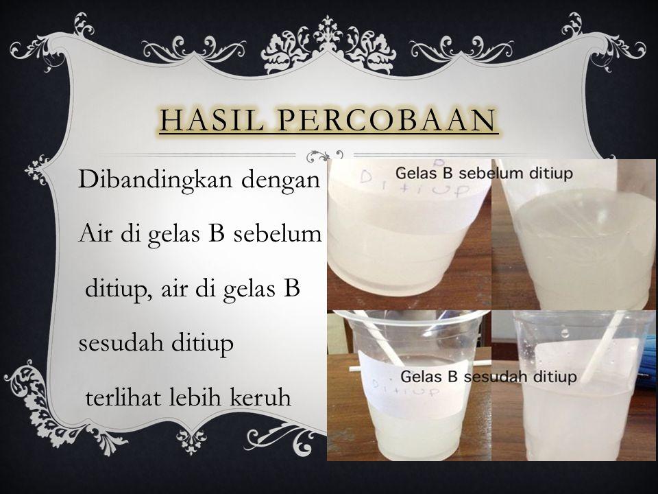 Dibandingkan dengan Air di gelas B sebelum ditiup, air di gelas B sesudah ditiup terlihat lebih keruh