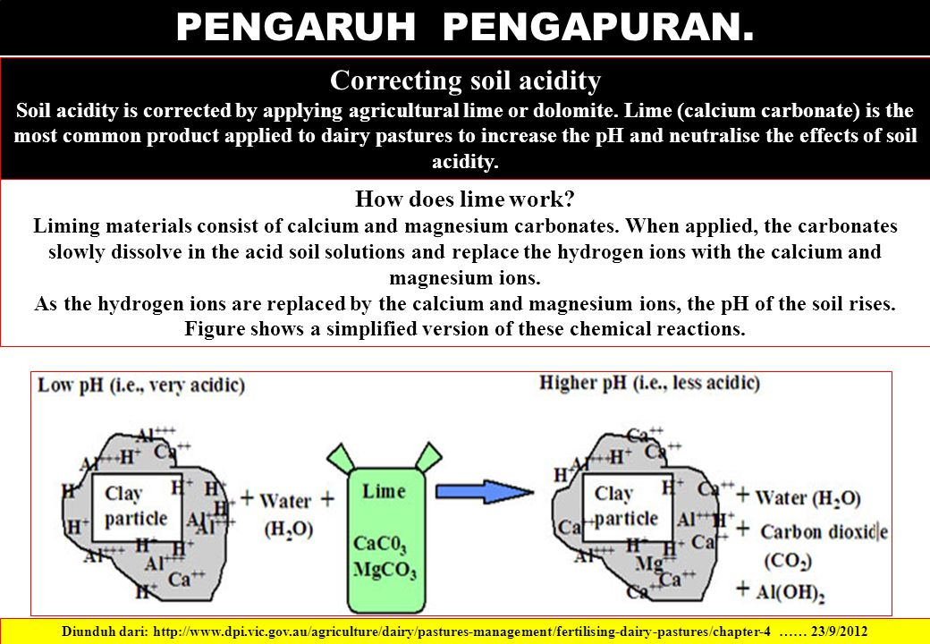 PENGARUH PENGAPURAN. Correcting soil acidity Soil acidity is corrected by applying agricultural lime or dolomite. Lime (calcium carbonate) is the most