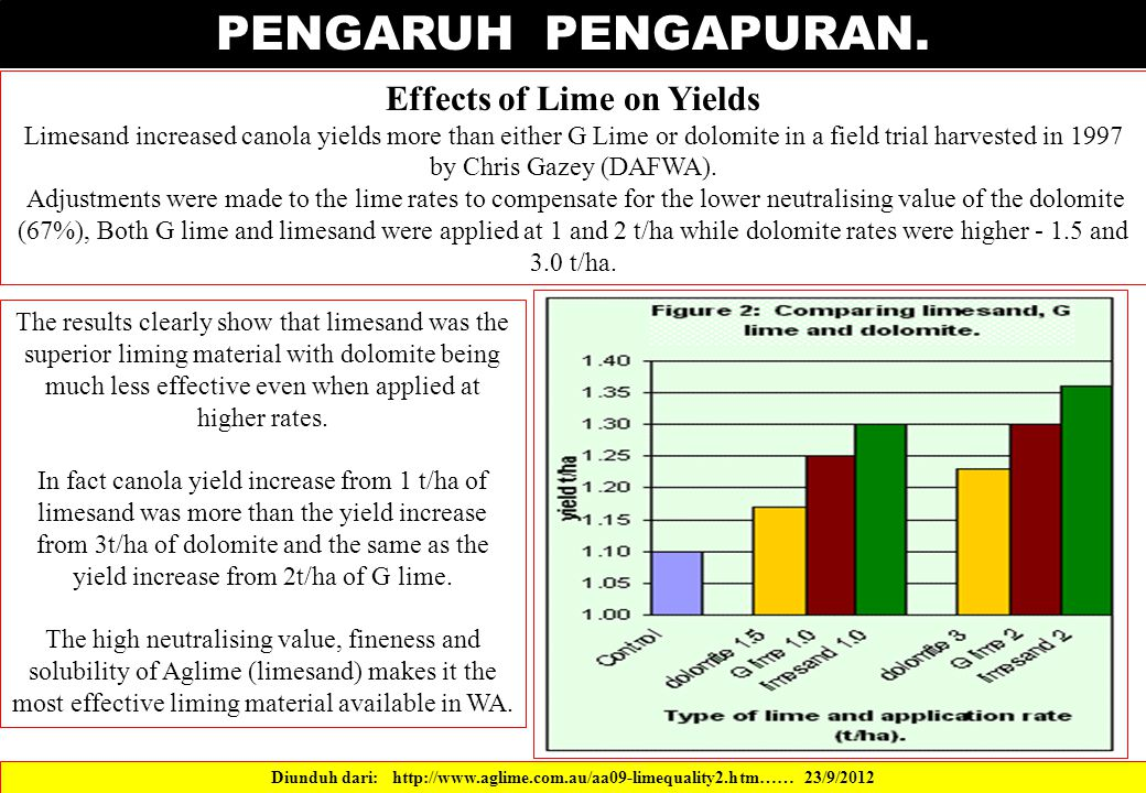 PENGARUH PENGAPURAN. Effects of Lime on Yields Limesand increased canola yields more than either G Lime or dolomite in a field trial harvested in 1997