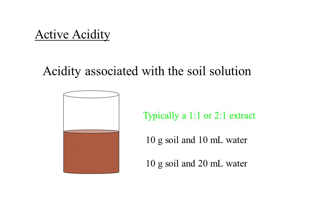 Active Acidity Acidity associated with the soil solution Typically a 1:1 or 2:1 extract 10 g soil and 10 mL water 10 g soil and 20 mL water