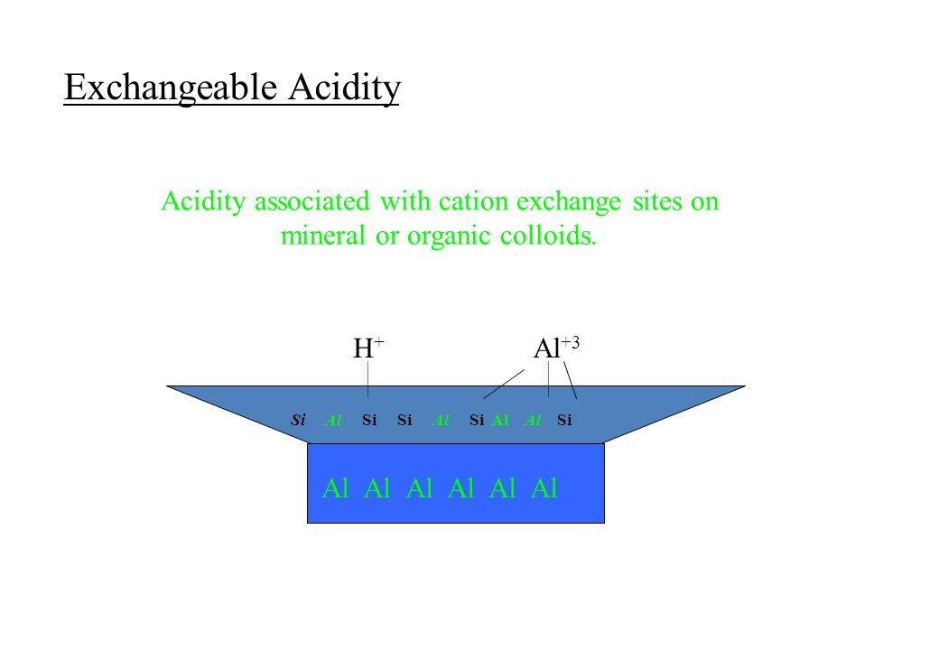 Exchangeable Acidity Acidity associated with cation exchange sites on mineral or organic colloids. Si Al Si Si Al Si Al Al Si Al Al Al Al Al Al H+H+ A