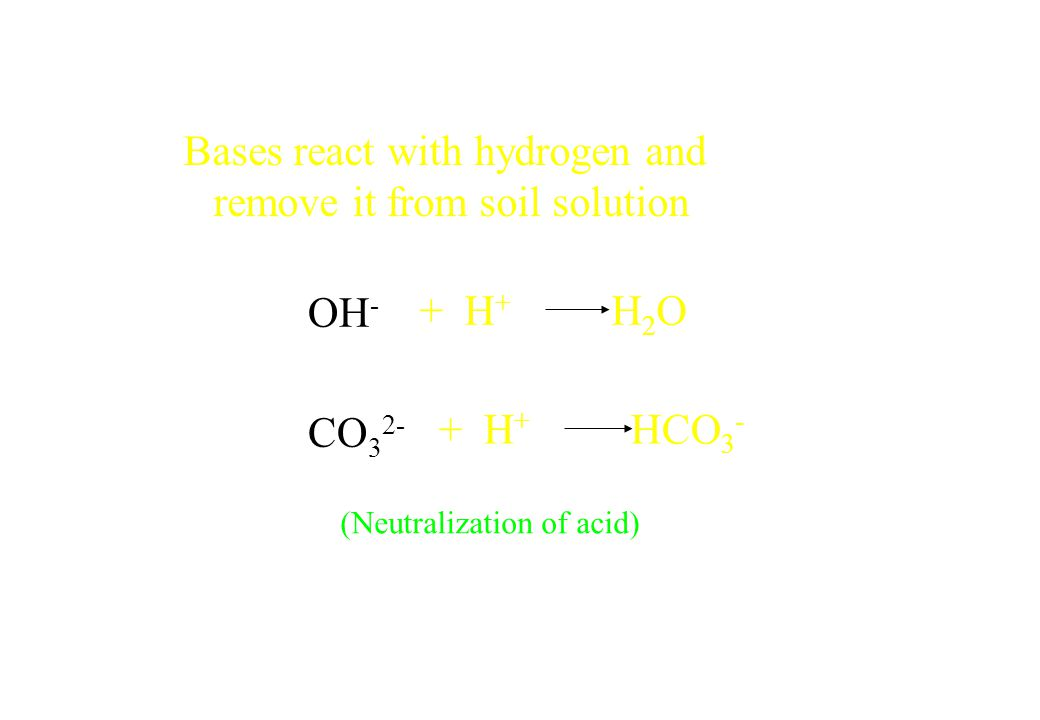 Bases react with hydrogen and remove it from soil solution OH - CO 3 2- + H + H 2 O + H + HCO 3 - (Neutralization of acid)