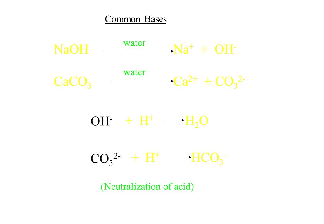 OH - CO 3 2- + H + H 2 O + H + HCO 3 - NaOHNa + + OH - CaCO 3 Ca 2+ + CO 3 2- (Neutralization of acid) water Common Bases