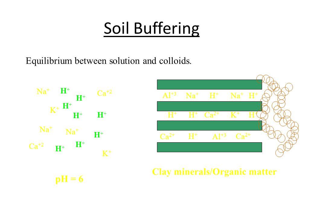 Al +3 Na + H+H+ H+H+ H+H+ K+K+ H+H+ Al +3 Na + Ca 2+ H+H+ H+H+ Clay minerals/Organic matter Soil Buffering Equilibrium between solution and colloids.