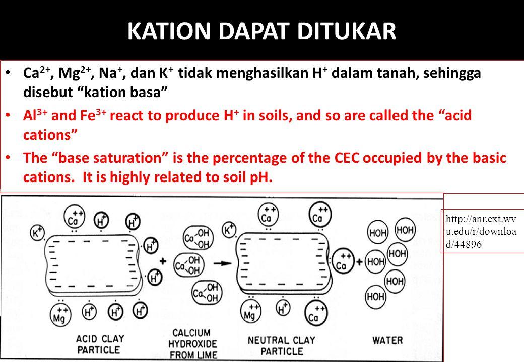 """KATION DAPAT DITUKAR Ca 2+, Mg 2+, Na +, dan K + tidak menghasilkan H + dalam tanah, sehingga disebut """"kation basa"""" Al 3+ and Fe 3+ react to produce H"""